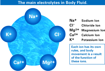 Electrolytes in Coconut Water